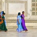 india tour nature  (1)