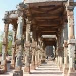 india tour nature  (6)